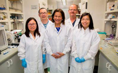 Pesquisadores revertem fenda palatina em ratos ainda no útero